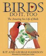 birdssexlife