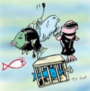 SMfische